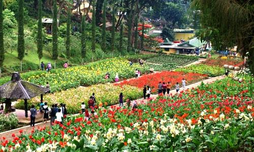 Berwisata ke Taman Rekreasi Selecta Batu Malang